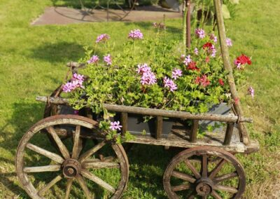 machines-agricoles-