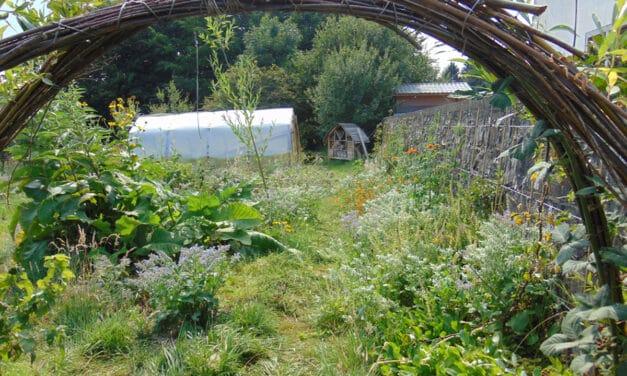 Formation  en permaculture