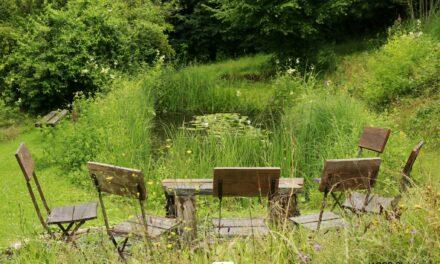Bouillon : Photos du jardin D'Annick